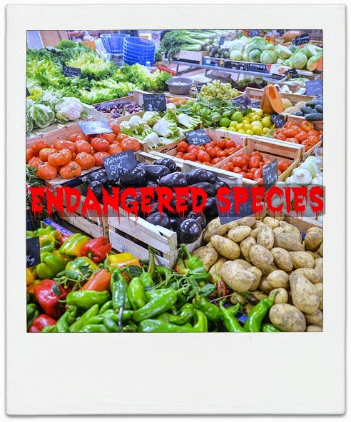 Vegetable variety at a produce market