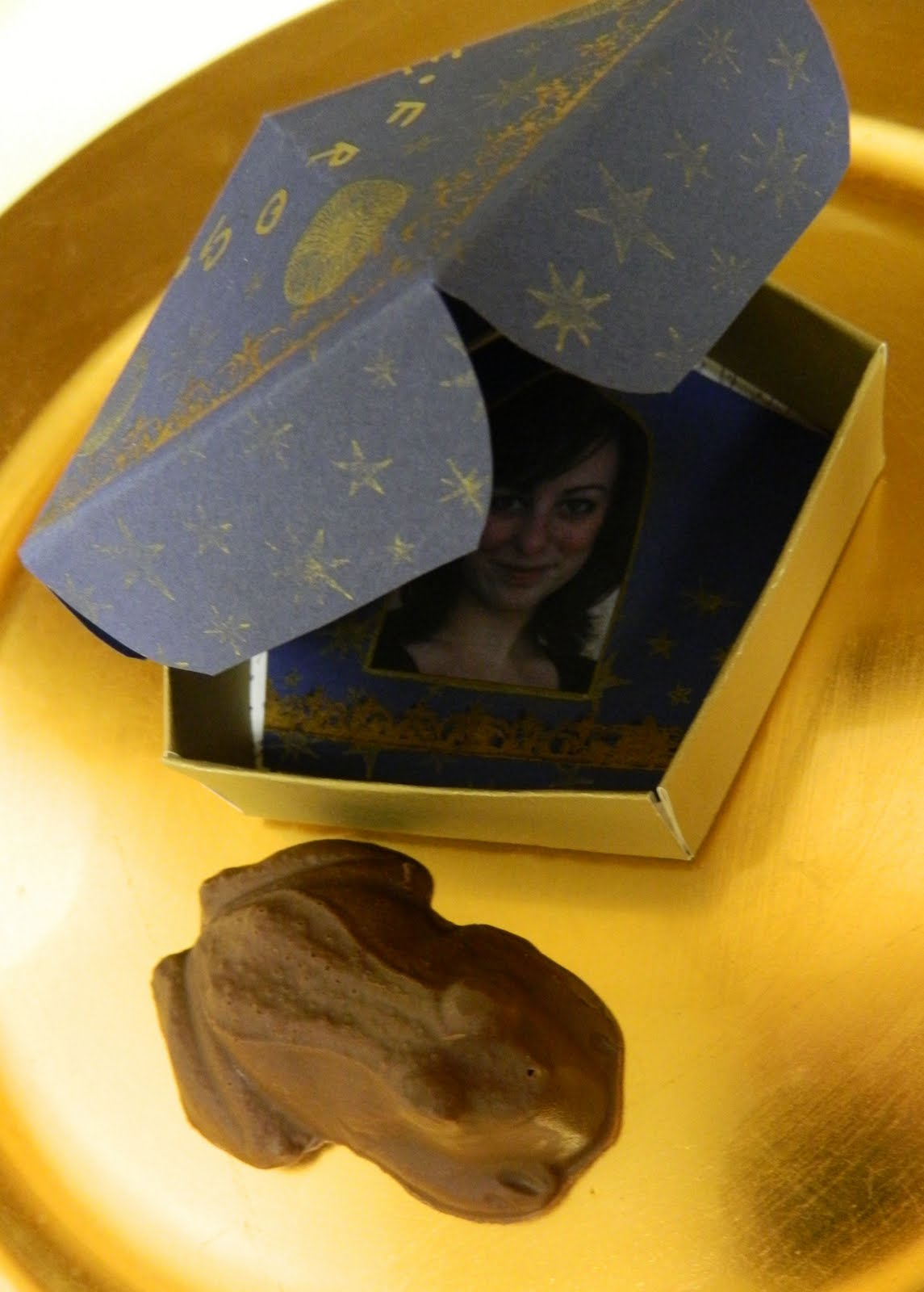 Harry Potter By Jkwling Chocolate Frog With Box And Card