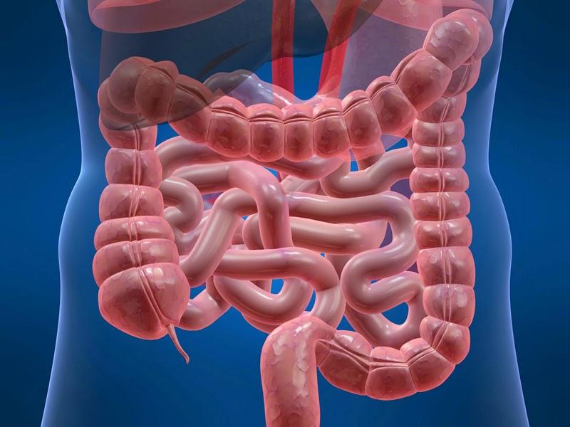 Nguyên nhân và cách điều trị bệnh viêm đại tràng