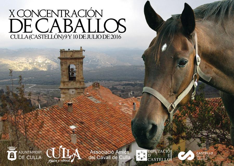 CONCENTRACIÓN DE CABALLOS CULLA