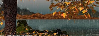 Belle couverture facebook automne en Haute Définition