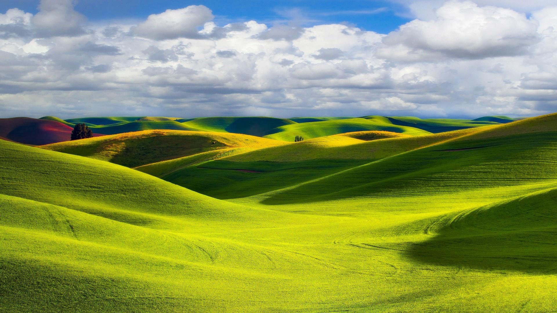 green landscape - high definition