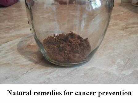 birch fungus chaga natural remedies for cancer prevention