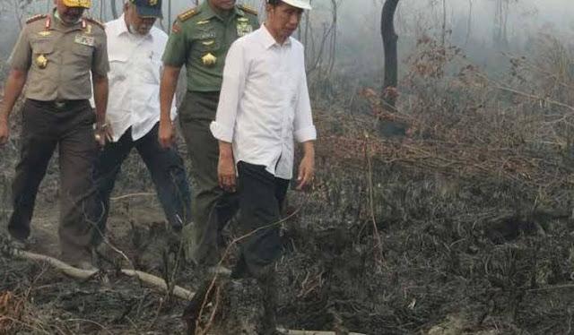 Presiden Jokowi Blusukan ke Palembang terkait Kebakaran Hutan