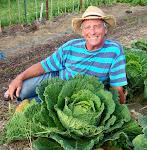 Sharing Gardens Coordinators: