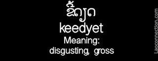 Lao word of the day - disgusting, gross - written in Lao and English