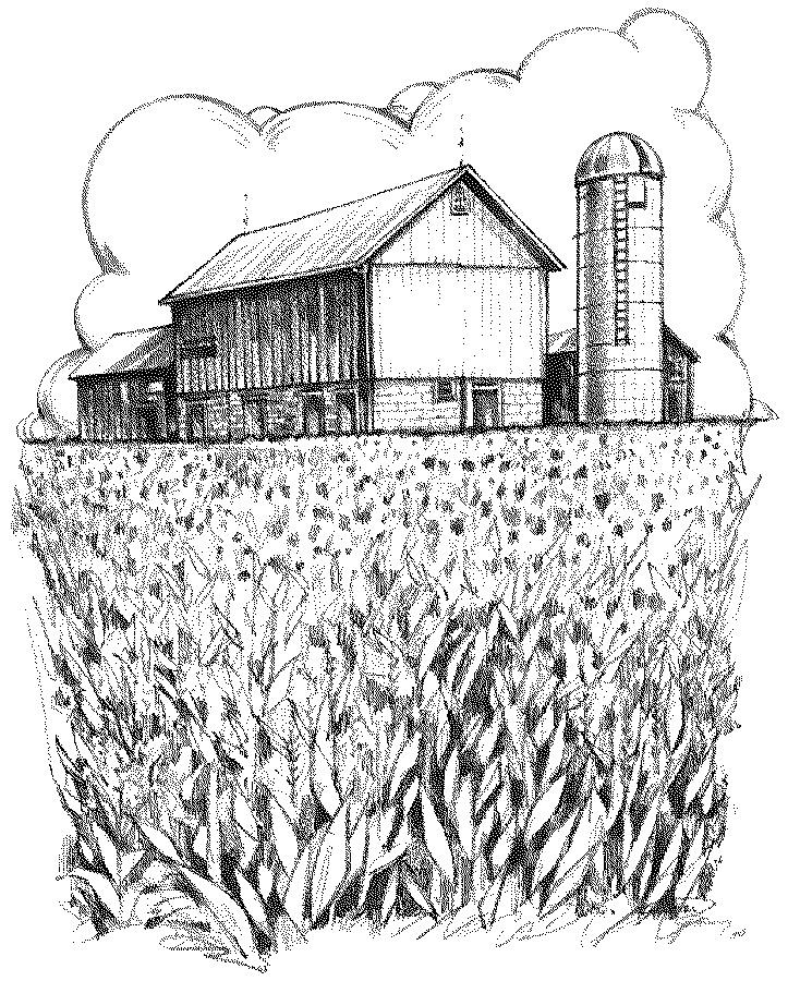 how to draw farm fields