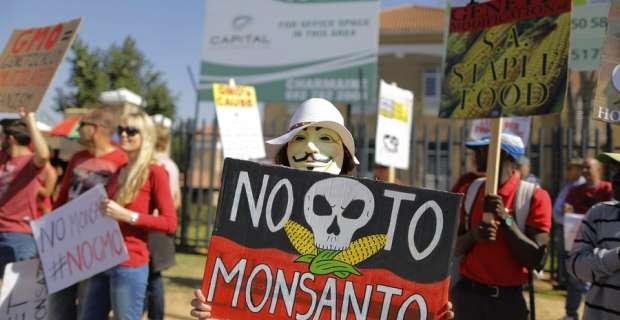Γαλλία: Απαγορεύεται με νόμο ο σπόρος της Monsanto Μεταλλαγμένα