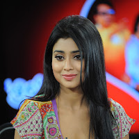 Shriya Saran Latest Interview Stills