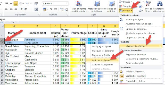 Afficher les lignes masquées Excel - Format
