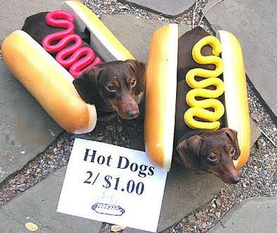 Dog hotdog Halloween costume