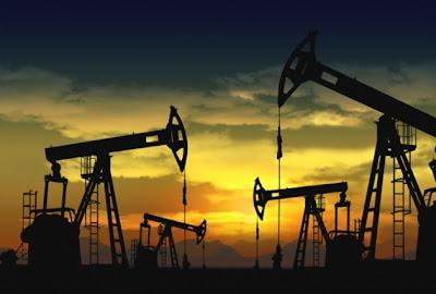 recursos no renovables y desarrollo sustentable