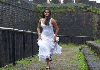 Hot and sexy Priyamani photo shool |southindian actress 37