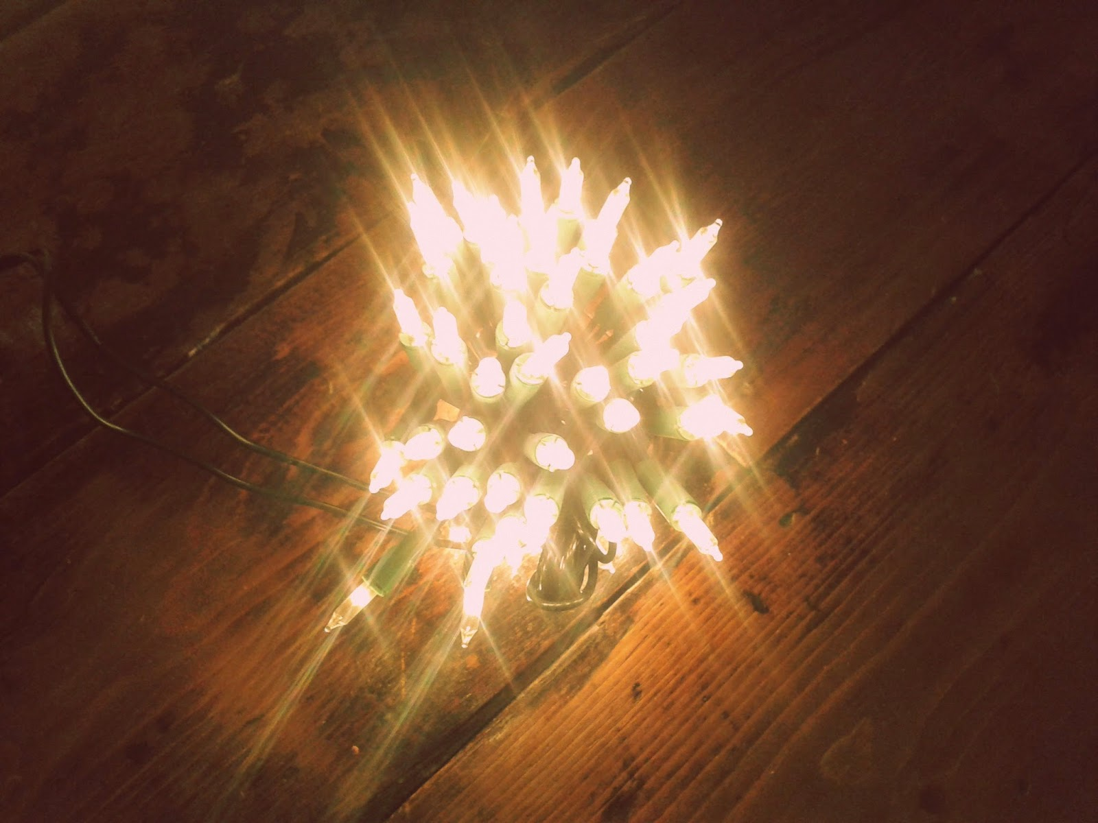 Project 365 #49 day 337 - Fairy lights // 76sunflowers