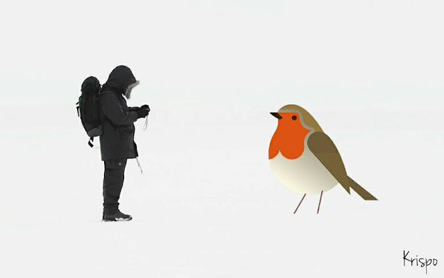petirrojo gigante en la nieve