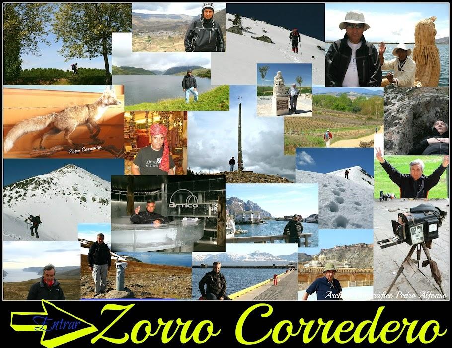 Zorro Corredero