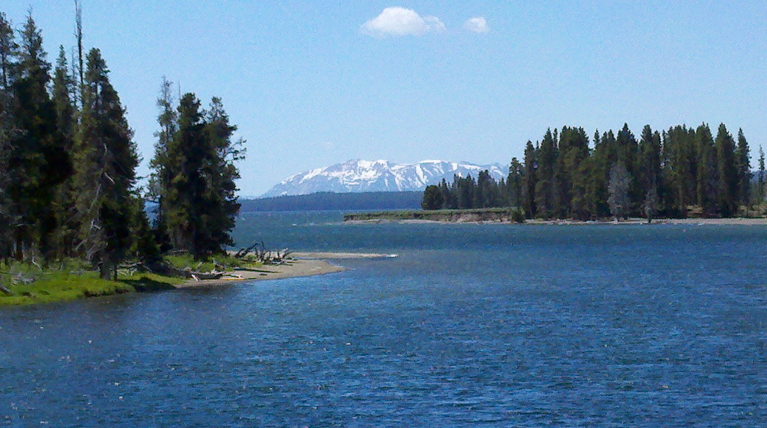 Articles for Yellowstone lake fishing