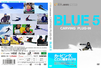 詳細「CARVING PLUG-IN BLUE5」