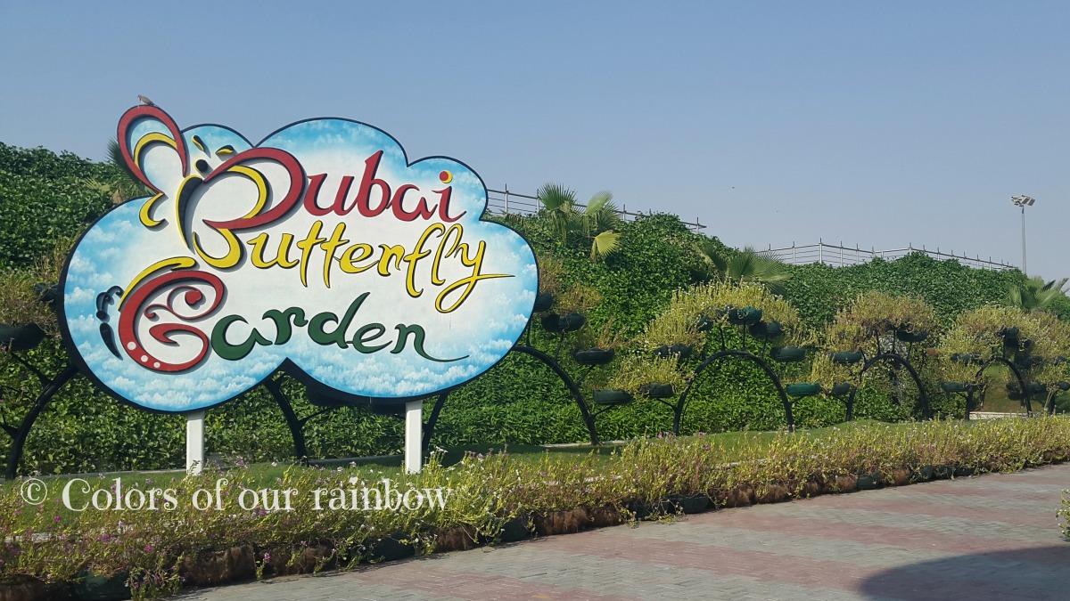Learning About Butterflies: DUBAI BUTTERFLY GARDEN  @http://colorsofourrainbow.blogspot.