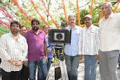Lakshmi Raave Maa Intiki Movie Opening-thumbnail-11