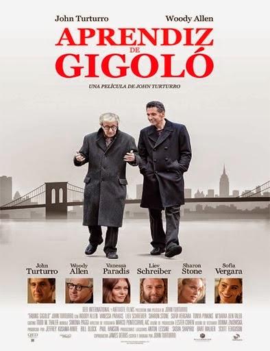 Ver Aprendiz de gigoló (Fading Gigolo) (2013) Online