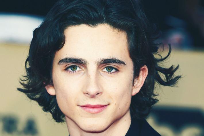 Timothée Chalamet Articles
