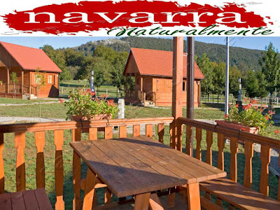 El Turismo Rural de Navarra es un sector de la economía navarra muy importante, tanto desde el punto de vista económico, como social y sectorial.  Esta segmento del turismo, permite por una parte, dinamizar la economía de los valles más rurales de Navarra.  Desde los años 90 cuando se empezaron a adaptar las  viviendas rurales, como alojamientos para los turistas, ha pasado mucho tiempo y a su vez también muchas cosas.  De las 487 Casas Rurales que había en el año 2003, hasta las 709 Casas Rurales de Navarra actuales, el aumento de estos alojamientos se ha incrementado  en un porcentaje del 68,69 %   www.casaruralurbasa.com