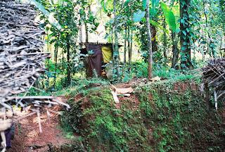 பகவான் நித்யாந ந்தா குழந்தையாக கண்டெடுக்கப்பட்ட இடம்