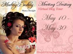 Meeting Destiny Tour