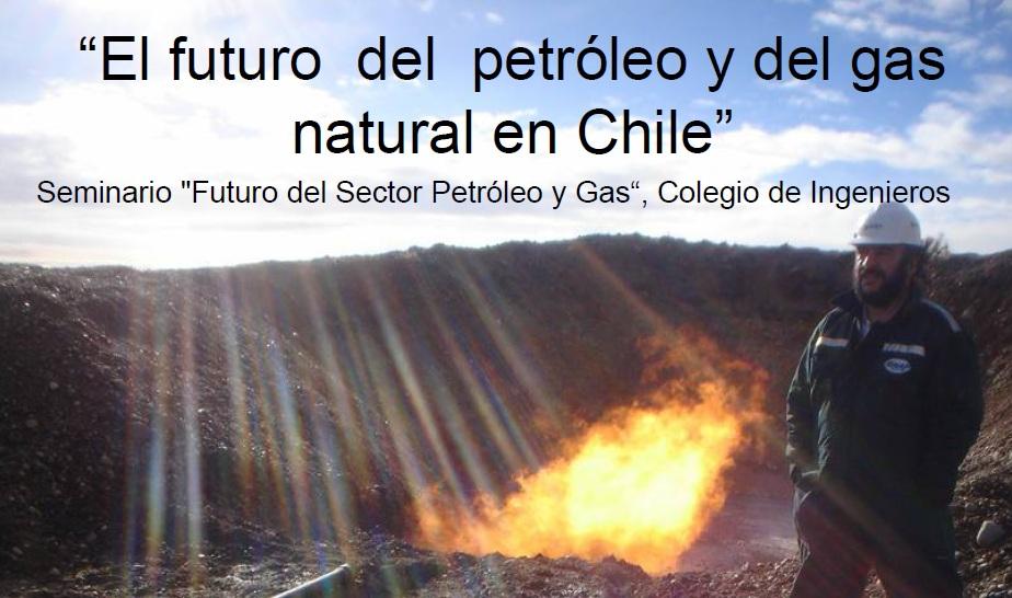 el petroleo y el gas natural: