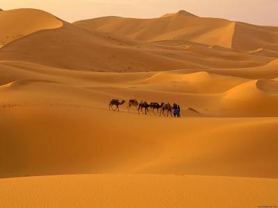 El Desierto más grande del mundo.