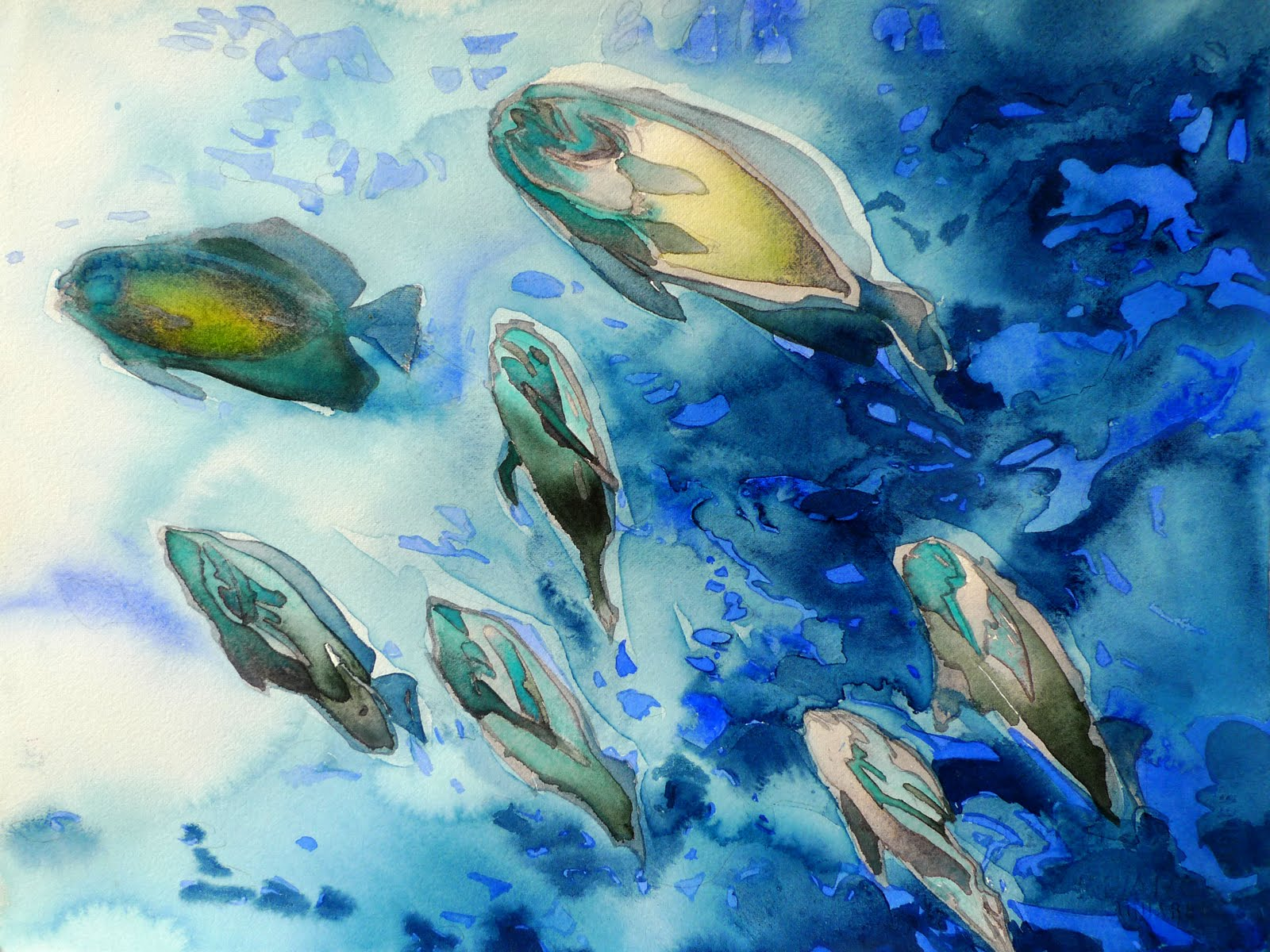 Paintings new works in watercolor all splashy and summer for Watercolor fish painting
