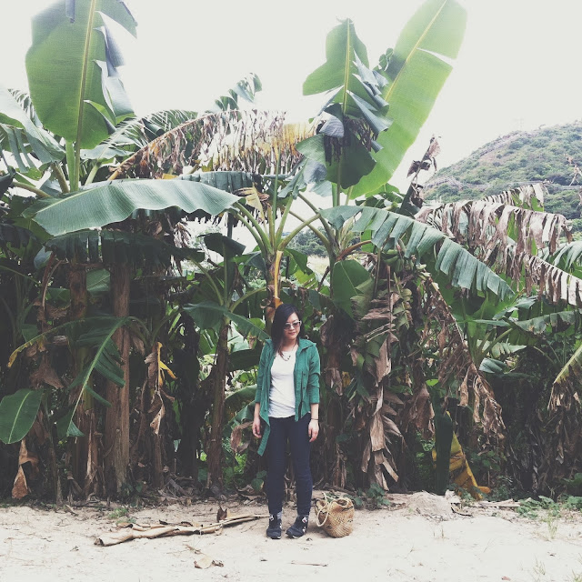 Kitty N. Wong / Lamma Island banana trees