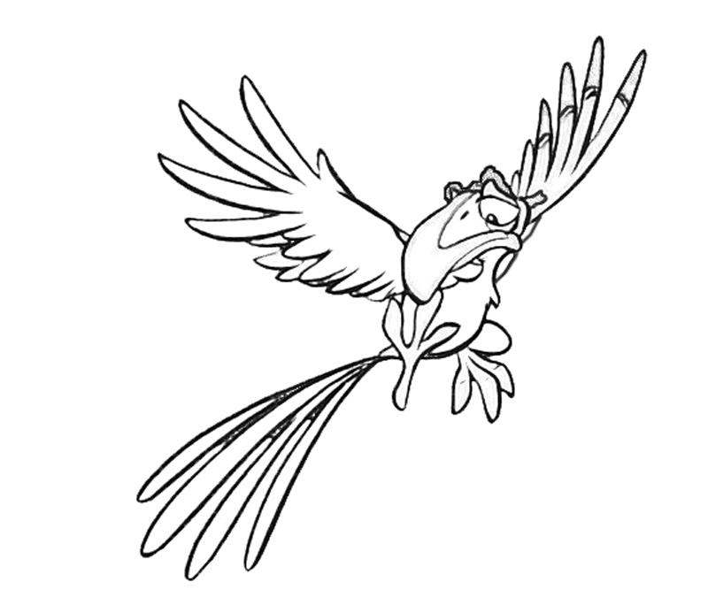 printable-zazu-look_coloring-pages