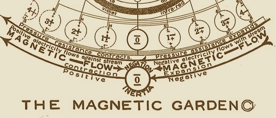 The Magnetic Garden