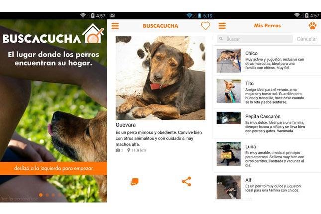 Las novedades del dia buscacucha una aplicaci n para - Novedades para mascotas ...
