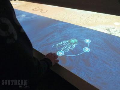 Australian Museum, Sydney - Interactive Play Table