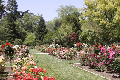 Eventbrite Rose Garden Sacramento