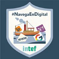 """Insignia de """"Navega por la información"""""""