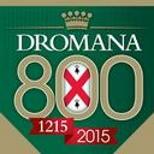 http://www.dromana800.com