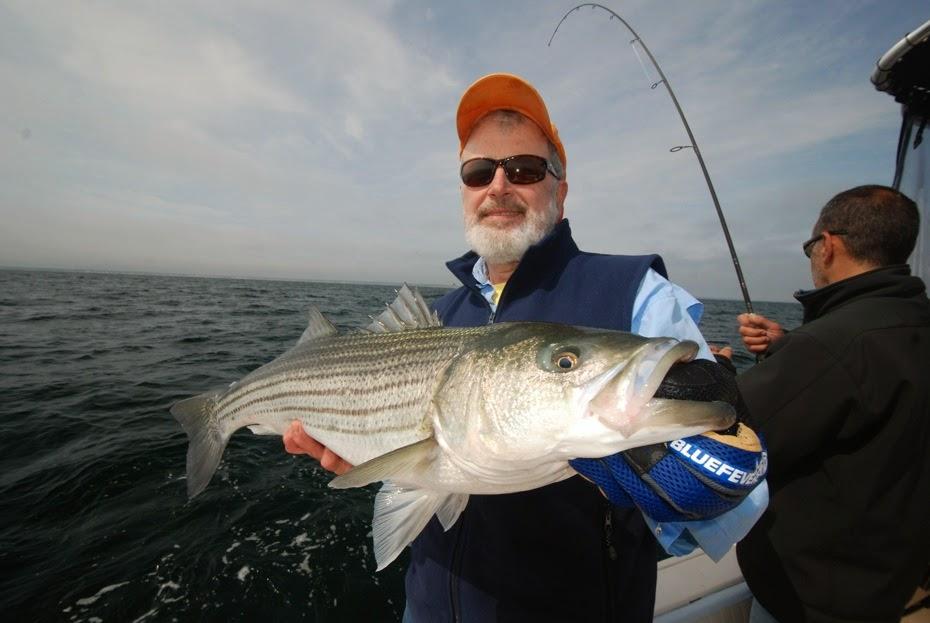 Captain kirk charters deep sea fly fishing striped for Cape cod deep sea fishing