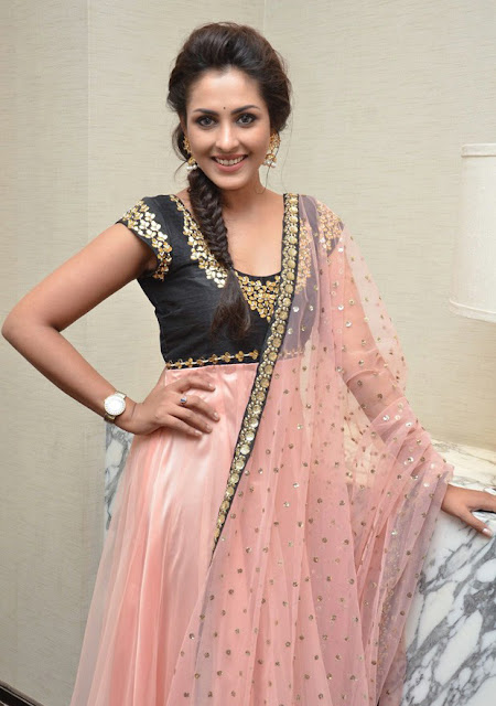Tollywood Celebrities Madhu Shalini At Cheekati Rajyam Success Meet Photos