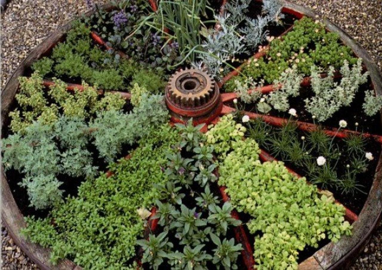 Herbs For Every Size Garden | Edible Garden Inspiration