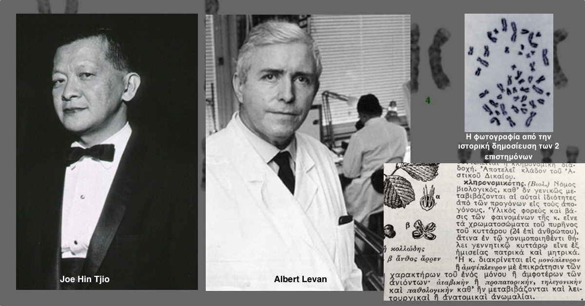 Στους μαιάνδρους της ιστορίας της βιολογίας