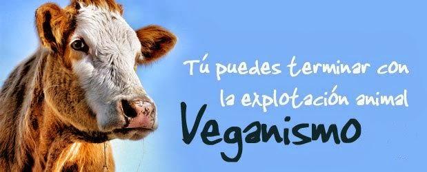 ¿Por qué Vegano?