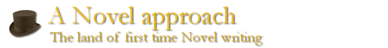 A Novel approach - The land of first time Novel writing