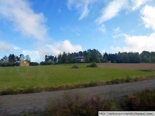 финская ферма-хуторок