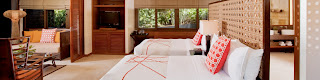 Asya Premier Suite