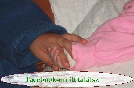 Facebook-on