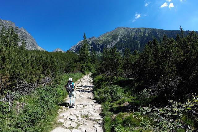 slovakia-bystra-lavka-hike-path